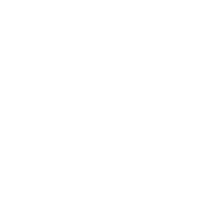 Newton Abbot Dog Training logo